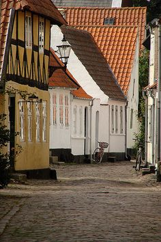 Ribe, Denmark | UFOREA.org | The trip you want. The help they need.
