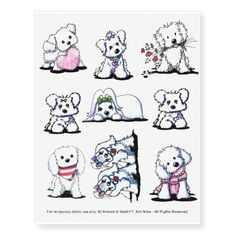KiniArt Maltese Tattoos Zazzle com is part of Dog Temporary Tattoos Zazzle - Shop KiniArt Maltese Tattoos created by KiniArt Personalize it with photos & text or purchase as is! Tattoos For Dog Lovers, Dog Tattoos, Animal Tattoos, Print Tattoos, Tatoos, Bichon Dog, Maltese Dogs, Yorkie, Animal Drawings