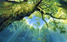 Illustration hayao miyazaki Princess Mononoke queue animation concept art studio ghibli other people's art background art Studio Ghibli Background, Animation Background, Hayao Miyazaki, Fantasy Landscape, Landscape Art, Mononoke Forest, Screened In Porch Diy, Howls Moving Castle, Environment Design