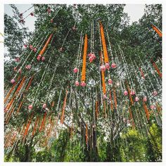 13 Trending and Showstopper Ideas For Wedding Ceiling Decorations Wedding Mandap, Outdoor Wedding Venues, Wedding Stage, Indoor Wedding, Wedding Ceiling Decorations, Floral Wedding Decorations, Wedding Colors, Mandap Design, We Fall In Love