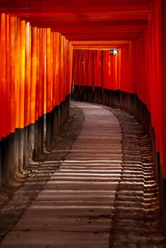 Torii leading to the inner shrine, Fushimi Inari Taisha, Kyoto, Japan