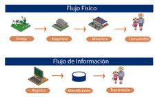 Cómo funciona un sistema para la Trazabilidad - Evaluando ERP Business Software