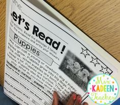 Blog Post about Textual Evidence in K-2
