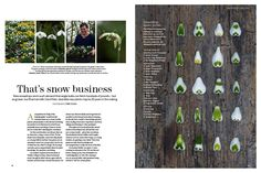 That's snow business, Gardens Illustrated February 2010