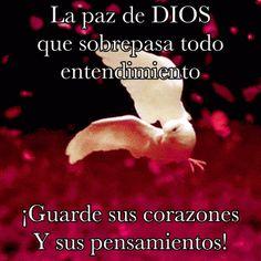 SUEÑOS DE AMOR Y MAGIA: La paz de Dios