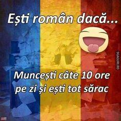 Sisters, Family Guy, Jokes, Humor, Romania, Funny, Husky Jokes, Humour, Memes