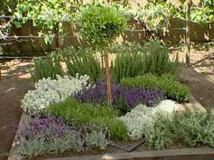 How to Make an Herbal Knot Garden Looks like a manageable knot garden, but be aware this is a very low-water garden. If you give anything more than drought-tolerant levels of water, that Rosemary and Licorice plant are quickly going to grow out of control Potager Garden, Garden Plants, Raised Herb Garden, Fruit Garden, House Plants, Culture D'herbes, Types Of Herbs, Herb Garden Design, Herb Garden