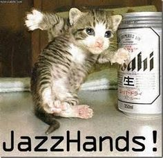 Funny Cat Pictures With Captions - Bing Imagesjazz hands