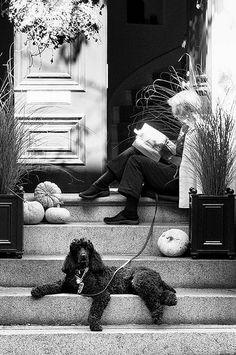 Beacon Hill, Boston | (M) | Flickr