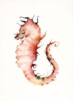 Seahorse in Corals Large Archival print by amberalexander on Etsy, $40.00