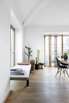 Living wooden flooring white walls simplistic design minimalist succulents indoors space