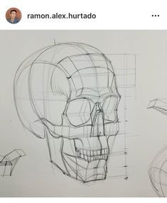 Slowly getting back into the swing of things and I've missed you all so much. Here is a time-lapse o Anatomy Sketches, Anatomy Drawing, Anatomy Art, Art Sketches, Art Drawings, Skull Reference, Figure Drawing Reference, Drawing Heads, Life Drawing