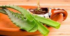 """Aloe vera gel has been called as """"Planet of life"""" and """"Miracle plant"""". Aloe vera gel has been used as herbal. Home Remedies For Pimples, Natural Home Remedies, Como Tomar Aloe Vera, Nutrition, Migraine, Natural Treatments, Natural Medicine, Kraut, Food Recipes"""