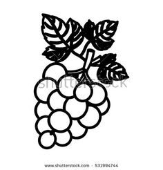 Isolated grapes fruit design