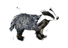 Badger - 5 x 7 inch print of original illustration - woodland creatures collection, via Etsy.