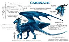 Carenath ref sheet by *rah-bop on deviantART