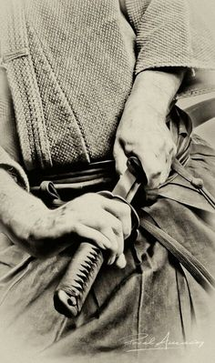 Samurai art of drawing a sword ~ Iaido is associated with the smooth, controlled movements of drawing the sword from its scabbard or saya, striking or cutting an opponent, removing blood from the blade, and then replacing the sword in the scabbard.