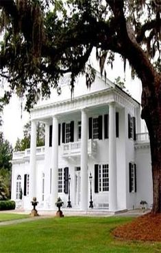 Twelve Oaks Plantation Houma, LA, just outside of New Orleans Southern Plantation Homes, Southern Mansions, Southern Homes, Southern Style, Plantation Houses, Southern Charm, Old Southern Plantations, Louisiana Plantations, Historic Homes