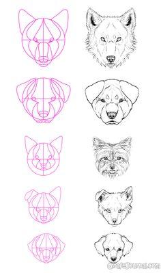 Как нарисовать собаку поэтапно?