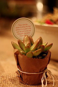 For the party favor, each guest took home a little succulent with a Walt Whitman quote stuck in it. We found these succulents at {Home Depot} for about $1 a piece which makes for a pretty inexpensive favor. We then placed them in kraft paper sacks, cut them with pinking shears, and wrapped with twine {which was also purchased at Home Depot}