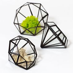 Give gardens under glass—diamond-shaped terrariums made in Sacramento from upcycled window glass. Glass Diamond containers from $65 each.