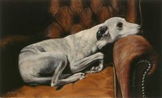 Nina Harvey printing - while you were gone Greyhound Art, Beautiful Dogs, Pet Portraits, Giclee Print, Dog Cat, Gallery, Whippets, Animals, Painting
