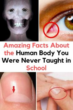 Amazing Facts About the Human Body You Were Never Taught in School - Science Education Creepy Facts, Wtf Fun Facts, Facts About Humans, Tissue Paper Crafts, Crazy Costumes, Fall Acrylic Nails, Weird Dreams, Weird Pictures, Elle Fanning