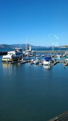 Norm H.'s photo of Fog Harbor Fish House on Foursquare