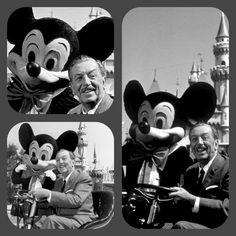 Some shots from Walt Disney's final, formal photo shoot at Disneyland - August 1966. Walt passed away on December 15, 1966.