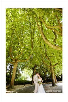 Kissing in the park under the blooming trees / een kus in het park onder de bloeiende bomen