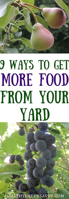 Short on space? A little creativity can help you get a lot more food from your yard! Click to read more or pin to save for later!