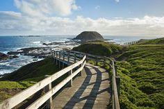 Family-friendly holiday destinations Phillip Island Victoria Australia