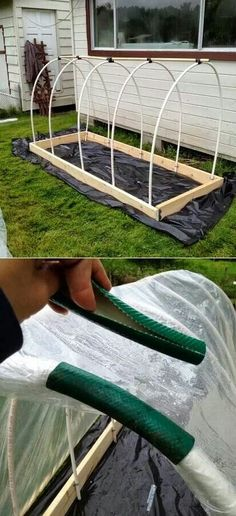 Raised bed and cover using pieces of hose for clamps to hold plastic....