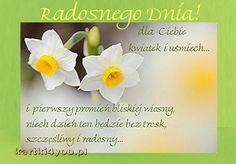 Radosnego Dnia! http://kartki4you.pl/ekartka-radosnego-dnia,19,0,11223.html
