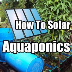 How to Build a solar powered IBC tote Aquaponics System CHEAP and EASY. How to Build a solar powered Aquaponics System, Aquaponics Greenhouse, Hydroponic Gardening, Organic Gardening, Aquaponics Plants, Greenhouse Ideas, Hydroponic Shop, Homemade Hydroponics, Homemade Greenhouse