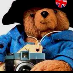 Paddington with camera Spectacled Bear, Bear Images, Paddington Bear, Family Picnic, Picnic Ideas, Teddybear, Kids Playing, Childhood Memories, Cute Pictures