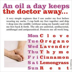 An oil a day!