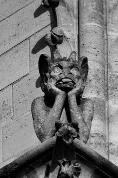 The Gargoyles of Notre dame - Le Stryge