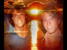 andy gibb'