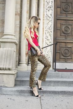 Animal Print Pants, clutch, shoes, red
