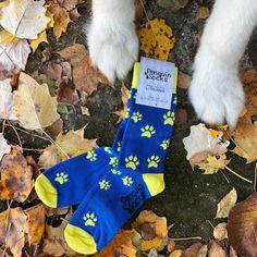 Underwear & Sleepwears Considerate Fashion Men Socks Novelty Dog Cute Socks Men Cartoon Pug Poodle Dachshund Tube Sock Funny Cotton White Long Cool Socks
