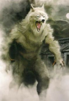 There's someone in the wolf Lycan Anubis Armando Hernández Werewolf Hunter, Werewolf Art, Fantasy Creatures, Mythical Creatures, Wolf Hybrid, Bark At The Moon, Vampires And Werewolves, Big Bad Wolf, Classic Monsters