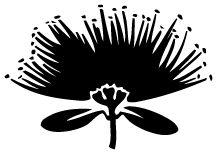 Pohutukawa - Bright red in color, considered a Christmas flower in New Zealand. Native Drawings, Hawaiian Pattern, Led Light Design, Pole Art, New Zealand Art, Nz Art, Kids Line, Stencil Patterns, Gourd Art