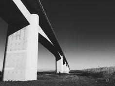 under the bridge . . #たいにーぴーぽー