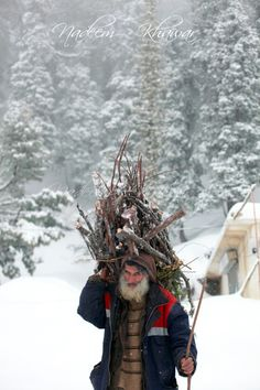 Winter firewood, Muree, Pakistan. Muree was the summer capital of the British Raj in the Punjab Province until 1864. The city is a popular tourist destination located on the southern slopes of the Western Himalayan foothills as they ascend northeastwards. (V)