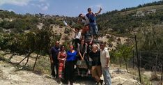 Volunteering – Ascent of Tzfat Volunteer Programs, Volunteer Work, Wine And Cheese Party, Soup Kitchen, City State, Medical Conditions, Tour Guide, Farm Animals, Mystic