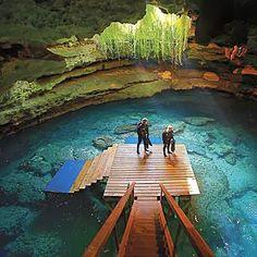 Springs Scuba Diving Resort - Williston, Florida