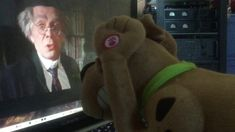 Scooby doo watched the fearless vampire killers trailer