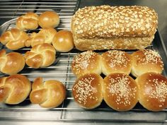 Honey whole wheat loaf and soft dinner rolls in different shapes