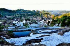 Niigata Hoshitoge rice terraces - info